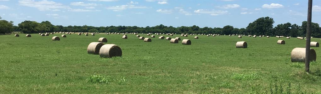 Highly Productive Bermuda Hay Farm : Delaware : Nowata County : Oklahoma