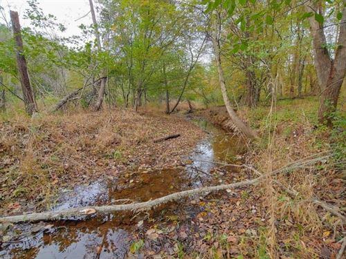 $1,195 Per Ac, / Timber Investment : Maxeys : Oglethorpe County : Georgia