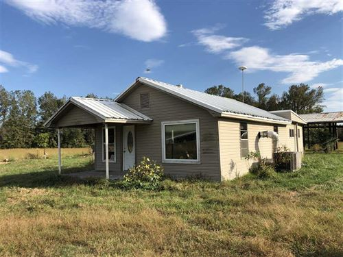 20 Acres With an Old-Home Place : Vilonia : Faulkner County : Arkansas