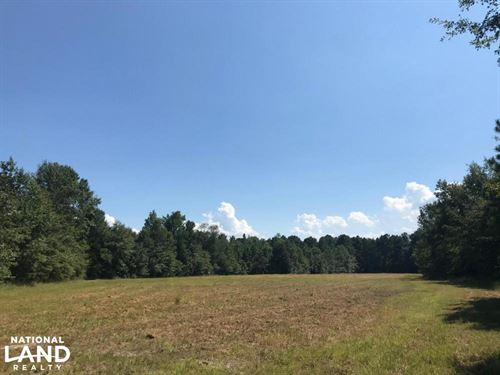 Lake Moultrie Hunting And Home Site : Bonneau : Berkeley County : South Carolina