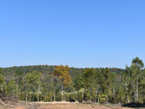 Ne Al Land Auction 7 Tracts in 4 Co : Guntersville : Marshall County : Alabama