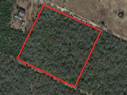 10.47 Acres in Leon County, TX : Normangee : Leon County : Texas