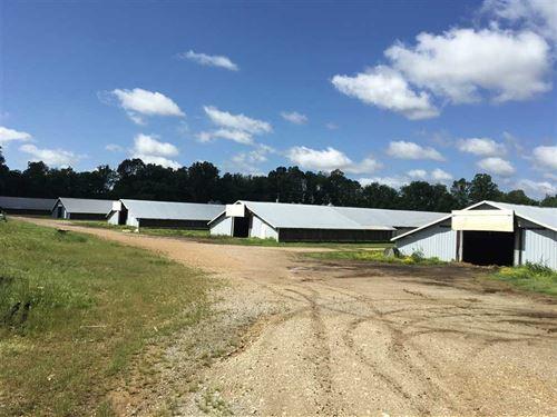 5 House Peco Poultry Farm, 38 : Smithville : Sharp County : Arkansas