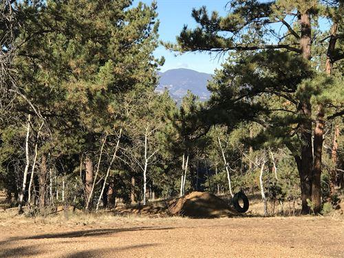 Home Site & Recreational Land : Florissant : Teller County : Colorado