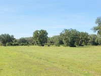 333Ac Ocala Lake Estates Waterfront : Fort McCoy : Marion County : Florida