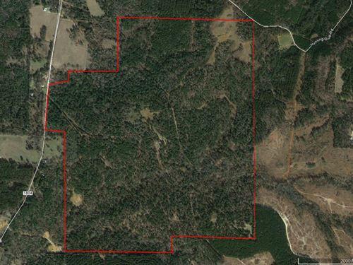 Excellent 398.475 Acres : Jacksonville : Cherokee County : Texas