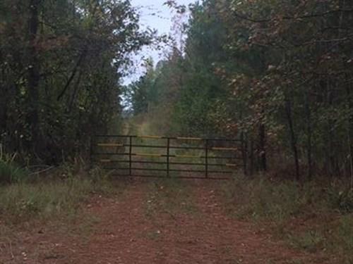 Oconee Gem : Watkinsville : Oconee County : Georgia