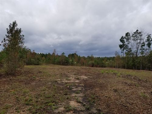 Hilltop Homesite : Gray : Jones County : Georgia