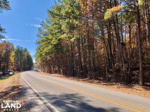 The Longleaf Ridge South Tract : Vincent : Shelby County : Alabama