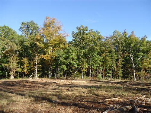 32 Acre Estate, South of Atlanta : Griffin : Spalding County : Georgia