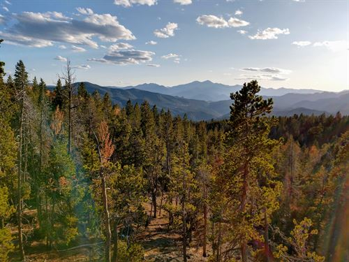 Longs Peak Lookout : Drake : Larimer County : Colorado