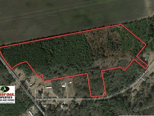 19.26 Acres of Hunting Land For Sa : Lumberton : Robeson County : North Carolina