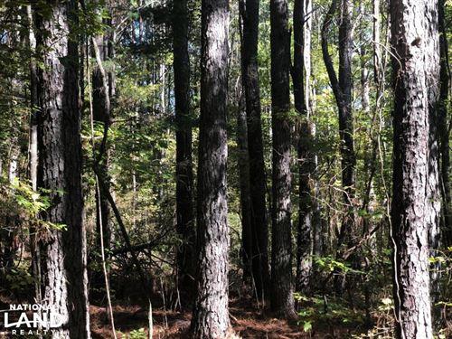 Lick Creek Paradise : Banner : Calhoun County : Mississippi