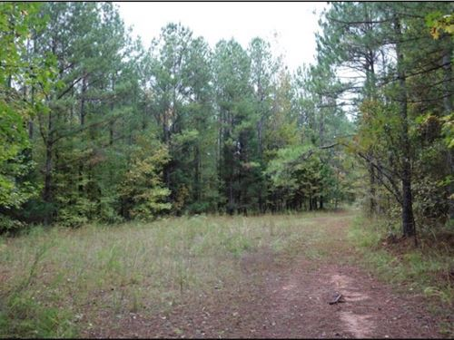 205 Acres In Monroe County In Aberd : Aberdeen : Monroe County : Mississippi