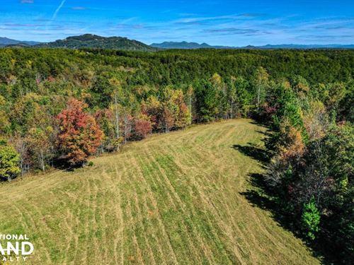 Conservation Community Lot With Vie : Mill Spring : Polk County : North Carolina