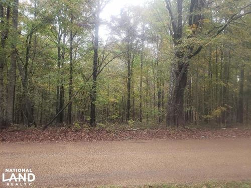 Hunting And Investment Property : Coffeeville : Yalobusha County : Mississippi