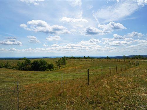 Grandview Farm : Grandview : Rhea County : Tennessee