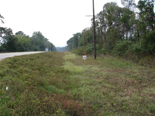 Gandy Farm 33 ac Hwy 84 : Monroeville : Monroe County : Alabama