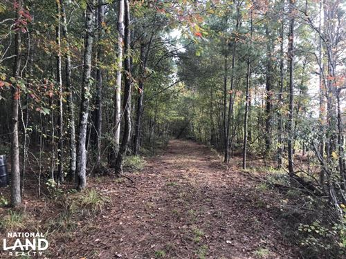 Hwy 45 Timber, Hunting, Development : Columbus : Lowndes County : Mississippi