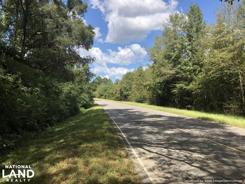 Bowling Green Rd Recreational Tract : Durant : Holmes County : Mississippi