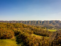 44 Acres Unrestricted With Spring : Eidson : Hawkins County : Tennessee