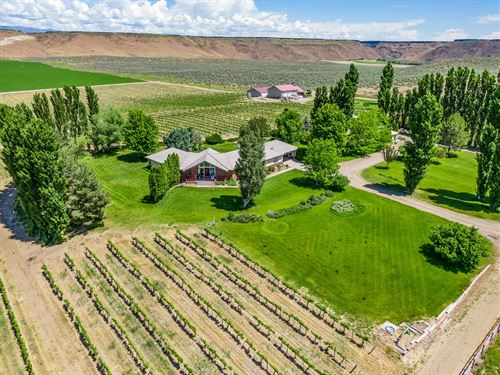 Award Winning Turn-Key Winery : Hammett : Elmore County : Idaho