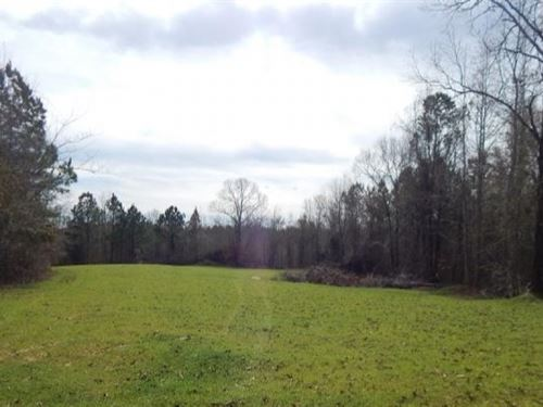 75 Acres In Madison County In Picke : Pickens : Madison County : Mississippi