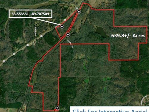 639.8 Acres In Montgomery County : Winona : Montgomery County : Mississippi