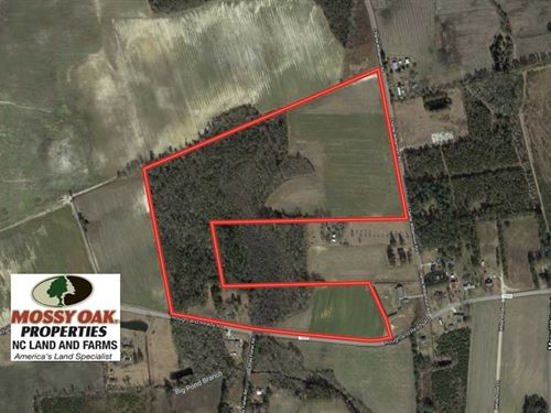 Under Contract, 59.27 Acres : Whiteville : Columbus County : North Carolina