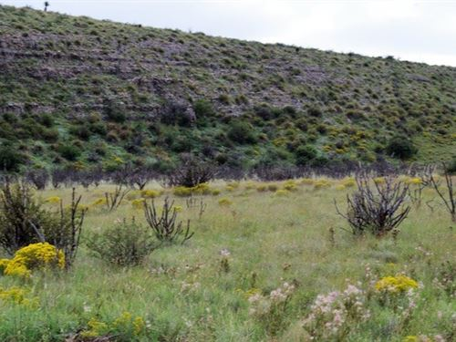 45 Acres New Mexico Bordering Blm : Roswell : Chaves County : New Mexico