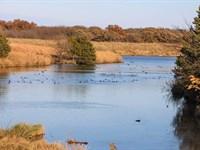 Premium Deer/Duck Hunting Property : Herington : Dickinson County : Kansas