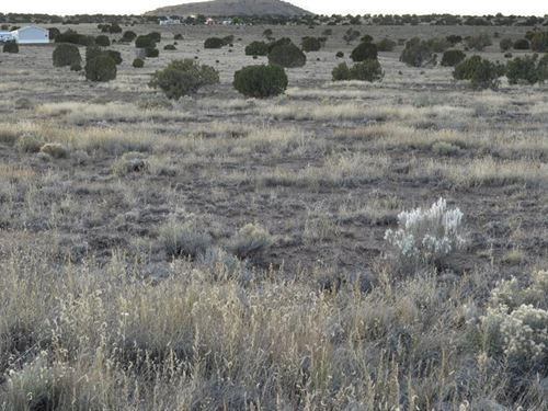 Nice Pristine Acreage, $229/Mo : Concho : Apache County : Arizona