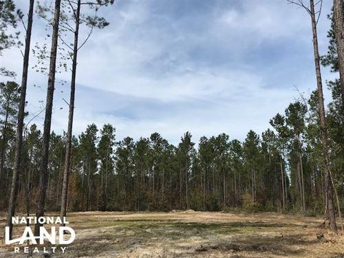 National Forest Homesite : Huger : Berkeley County : South Carolina