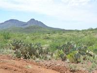 Super Scenic Ranch Land, $334 P/Mo : Douglas : Cochise County : Arizona