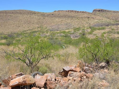 Wild West,Amazing Land, $340 P/Mo : Douglas : Cochise County : Arizona