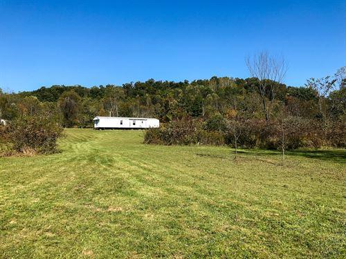 Sherrard Rd, 31 Acres : Cambridge : Guernsey County : Ohio
