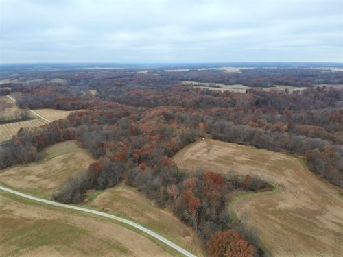 Hunting Land Bordering State Park : Rushville : Schuyler County : Illinois