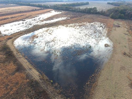 Duck And Deer Hunting Land : Marks : Quitman County : Mississippi