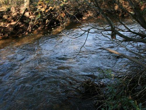 19.32 Acres Land Sell Patrick : Meadows Of Dan : Patrick County : Virginia