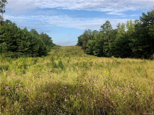 Hidden Forest Trail Tract : Wetumpka : Elmore County : Alabama