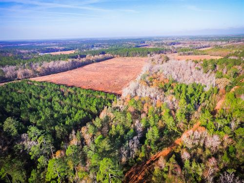 21 Acre Homesite, Pasture : Ludowici : Long County : Georgia