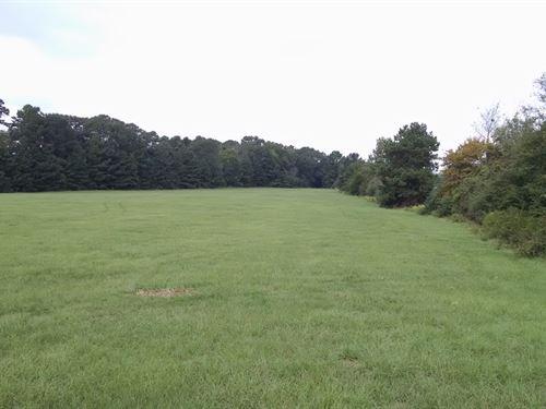 East Texas Land 24.4 + / Acres : Hallsville : Harrison County : Texas