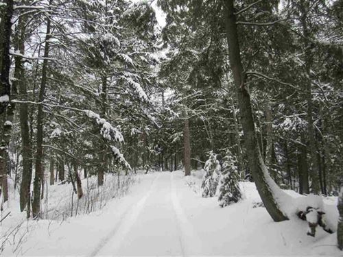 Secluded 160 Ac Iron River 1118832 : Iron River : Iron County : Michigan