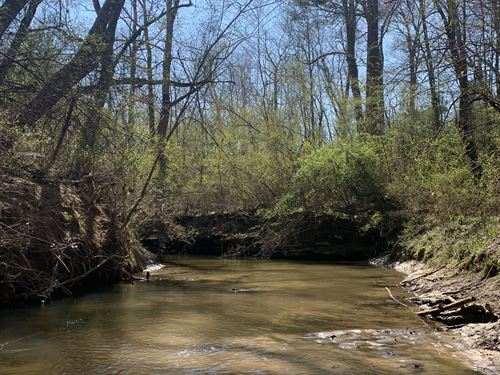 67 Acres in Section Al, With Creek : Section : Jackson County : Alabama