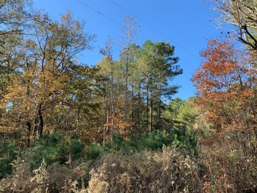 30 Acres In Neshoba County In Phila : Philadelphia : Neshoba County : Mississippi