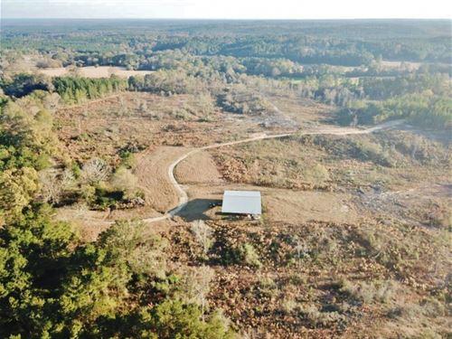 Hunting Land For Sale Sandy Hook : Sandy Hook : Marion County : Mississippi
