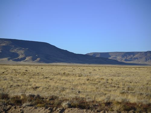 20 Acres Close to The Rio Grande : Costilla : Colorado
