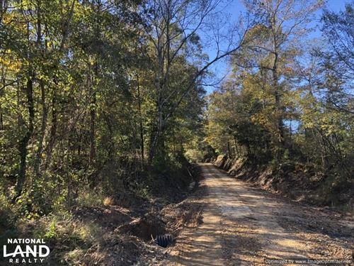 Durant Recreational Tract : Durant : Holmes County : Mississippi