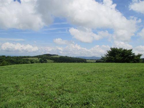 21 Acres Land Sell Patrick County : Meadows Of Dan : Patrick County : Virginia
