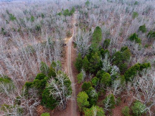 Deer/Turkey Hunting Land Home Site : Byhalia : Marshall County : Mississippi